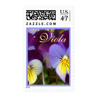 Purple Yellow Violas Postage