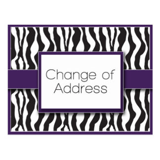 Purple Zebra Print Change of Address Postcards