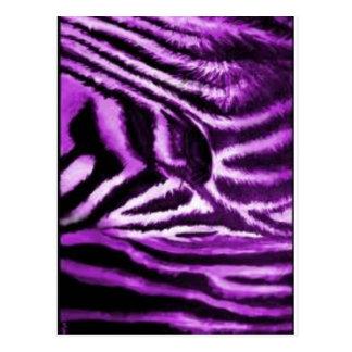Purple Zebra Print Items Postcard