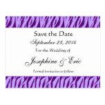 Purple Zebra Print Save The Date Postcard