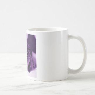 purplerose mug