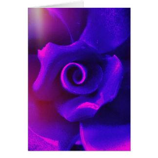 Purplish rose rays card