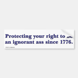 Purpose of the Declaration of Independence Bumper Sticker