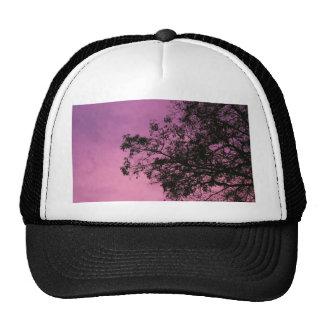 Purps Trucker Hat