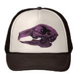 Púrpura anatómica del cráneo del conejo gorros