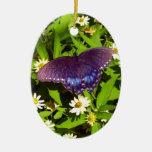 Púrpura azul iridiscente con las alas negras de la ornamento para arbol de navidad
