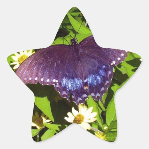 Púrpura azul iridiscente con las alas negras de la pegatinas forma de estrellaes personalizadas