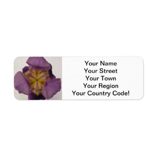Púrpura barbuda del iris etiqueta de remitente