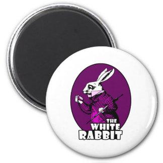 Púrpura blanca del logotipo del conejo imán de nevera