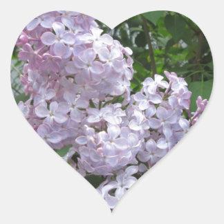 Púrpura bonita de la lila pegatina en forma de corazón