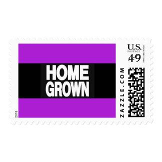 Púrpura de cosecha propia 2 estampillas