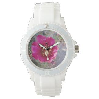 Púrpura de la flor de Cholla del bastón Reloj