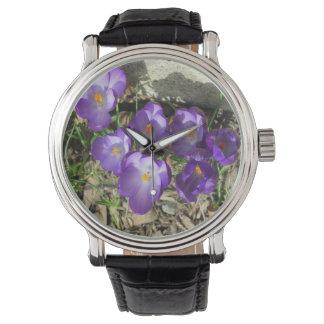 Púrpura de la flor de las azafranes reloj de mano
