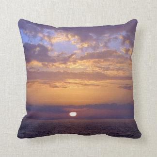Púrpura de la puesta del sol de la Florida y Cojín Decorativo