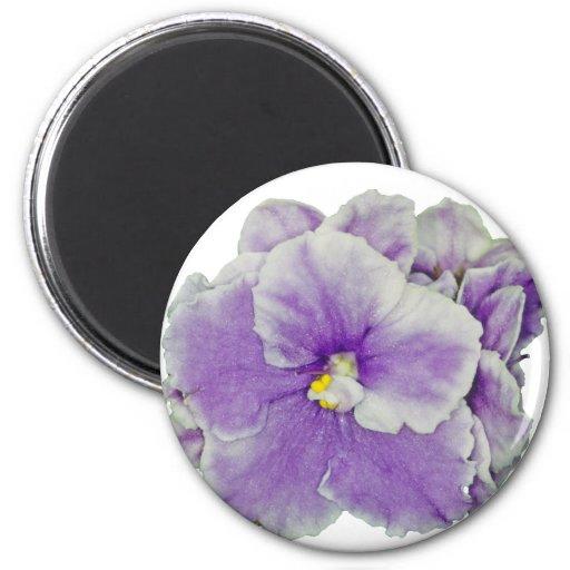 Púrpura de la violeta africana imán redondo 5 cm