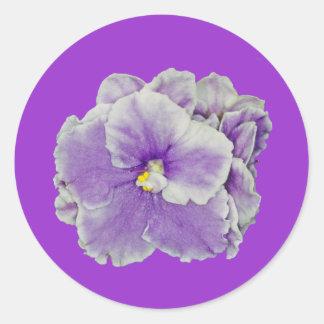 Púrpura de la violeta africana pegatina redonda
