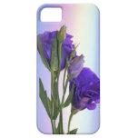 Púrpura de Lissianthus del Eustoma iPhone 5 Cárcasas