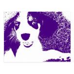 púrpura del beagle postal