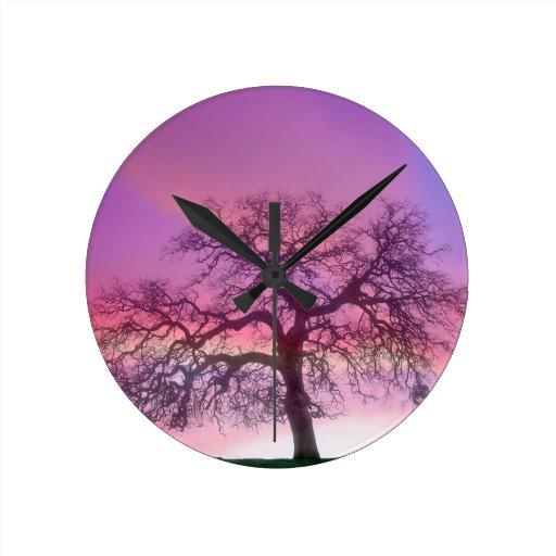Púrpura del invierno de los árboles de la naturale relojes