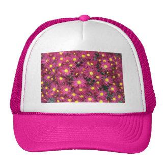 Púrpura del jardín del racimo del crisantemo gorra