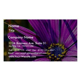 Púrpura del polen de las flores tarjetas de visita