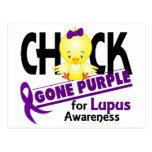 Púrpura ida polluelo 2 del lupus postal