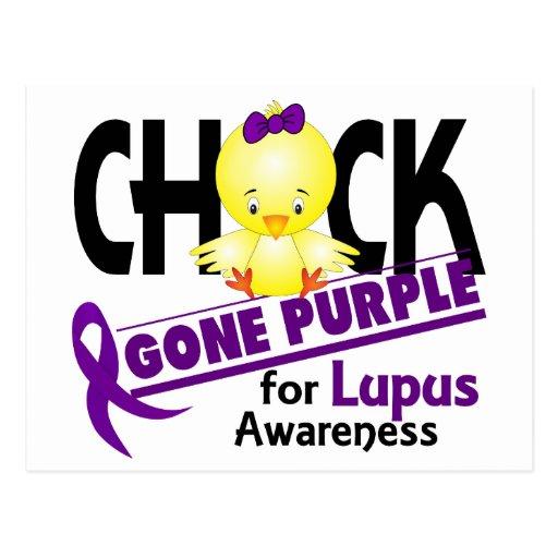 Púrpura ida polluelo 2 del lupus tarjetas postales