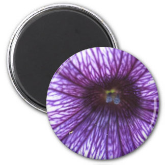 Púrpura Imán De Frigorifico