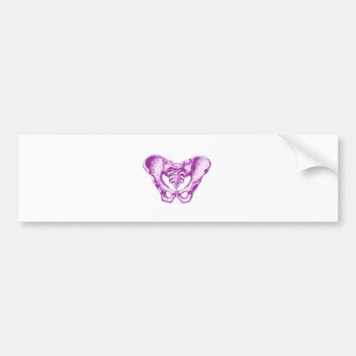 Púrpura masculina de la pelvis pegatina de parachoque