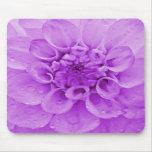 Púrpura Mousepad de la dalia Alfombrilla De Ratón
