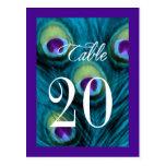 Púrpura y fantasía del pavo real del trullo postal