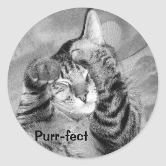 Purr-fect   sticker