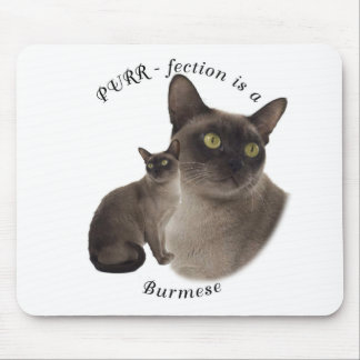 PURR-fection Chocolate Burmese Mouse Pad
