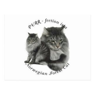 PURR-fection Norwegian Forest Cat Postcard