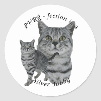 PURR-fection Silver Tabby Classic Round Sticker