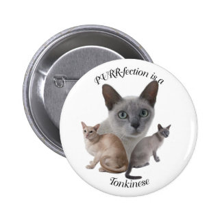PURR-fection Tonkinese 2 Inch Round Button
