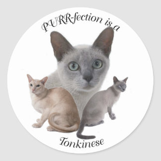 PURR-fection Tonkinese Classic Round Sticker