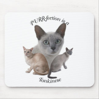 PURR-fection Tonkinese Mouse Pad