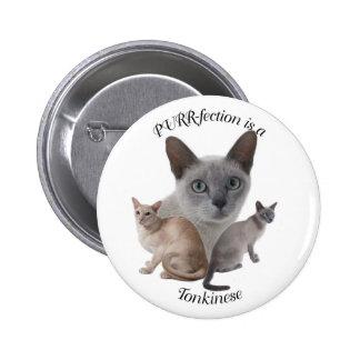 PURR-fection Tonkinese Pinback Button