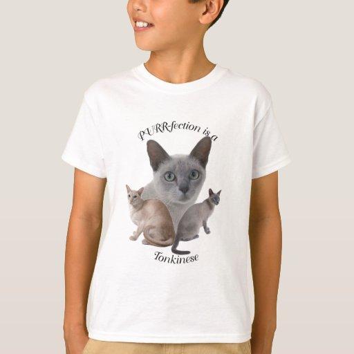 PURR-fection Tonkinese T-Shirt