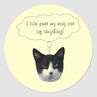 Purr My Way Out of Anything Stickers