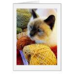Purrfect Birthday, Siamese Cat in Yarn Card