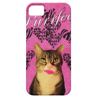 Purrfect iPhone 5 Covers