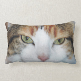 PURRfect Cat Lumbar Pillow