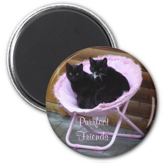 Purrfect Friends Cat Theme 2 Inch Round Magnet