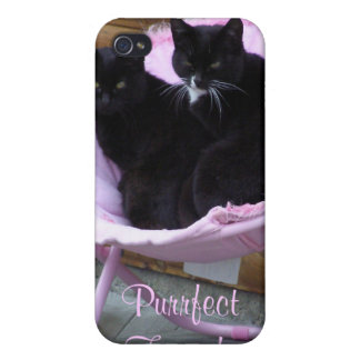 Purrfect Friends Cat Theme iPhone 4 Cover