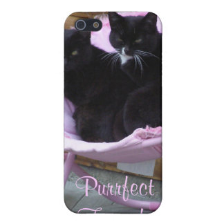 Purrfect Friends Cat Theme iPhone SE/5/5s Cover