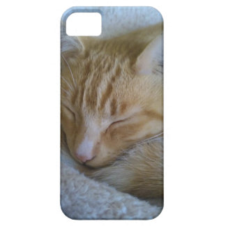 Purrfect i-Phone Case iPhone 5 Case