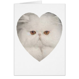 Purrfect Kitty Greeting Card