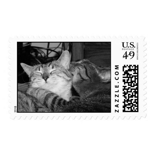 Purrfect Love Stamps